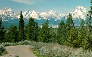 Jackson Lake - so beautiful!