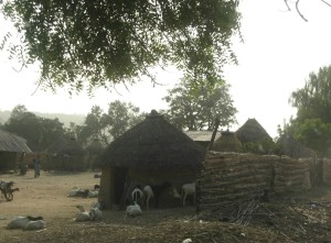 One of the villages where we held a free clinic