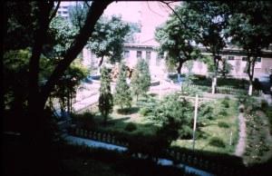 Hospital Grounds