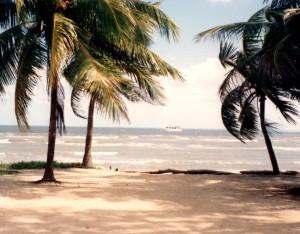 29 Pretty beach