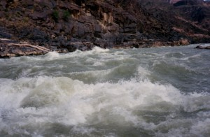 rapids run